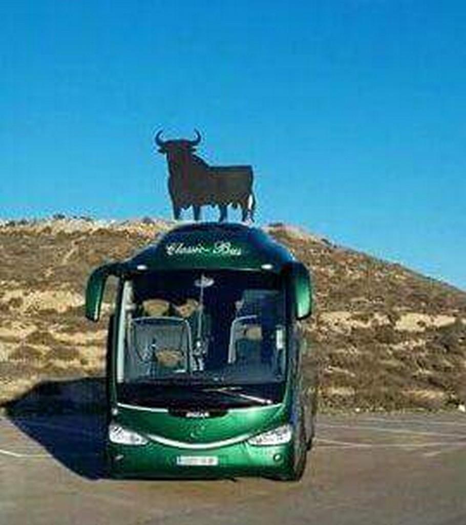 Autobus classic bus toro osborne1